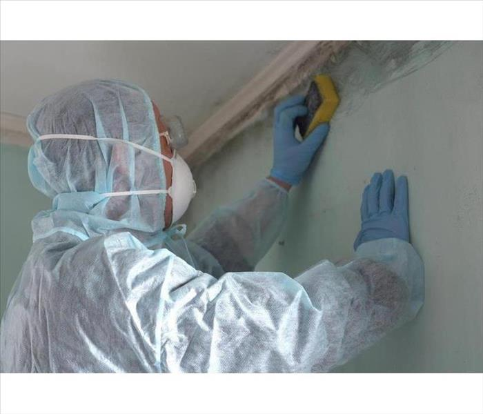 A man with a protective gear, mask, gloves and a sponge on his hand cleaning mold from a wall