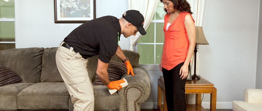 St. Charles, MO carpet upholstery cleaning