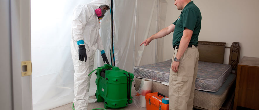 St. Charles, MO mold removal process